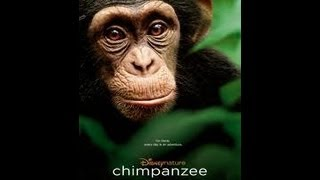 Chimpanzee - Chimpanzee movie review