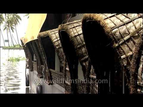 Exquisite Palm leaves Houseboat from Kerala