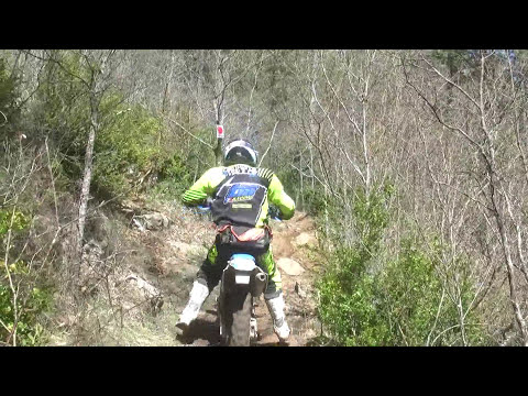 2014 FIM Enduro World Championship GP of Catalunya, Solsona Day 2