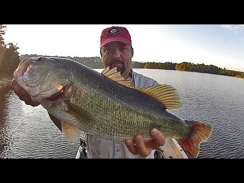 The best all around rod for bass fishing youtube for Best spinning reel for bass fishing