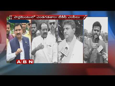 TDP Mp's Says We Will Explain How BJP cheated the people of Andhra Pradesh In Parliament