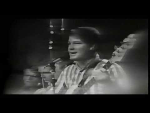 Beach Boys - Surfin' USA & Surfer Girl - (Live)