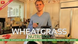 WHEATGRASS for NUTRITION ◦ Benefits, Facts, Information & Experience from LIVET LIFESTYLE & LIVET.tv