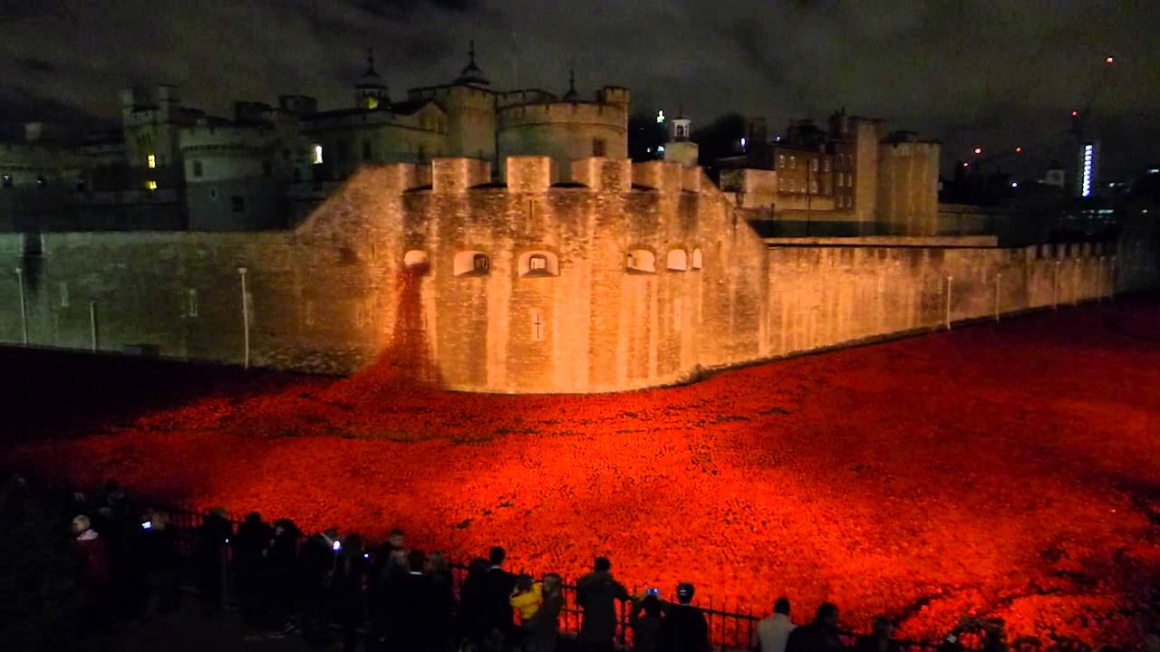 Images of Tower of London Poppies at Night Tower of London Poppy Tribute