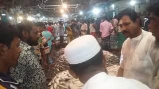 Download ইলিশ ঘাট চাঁদপুর 3Gp Mp4