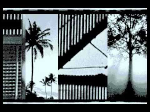 Bonnie Raitt - Who But A Fool