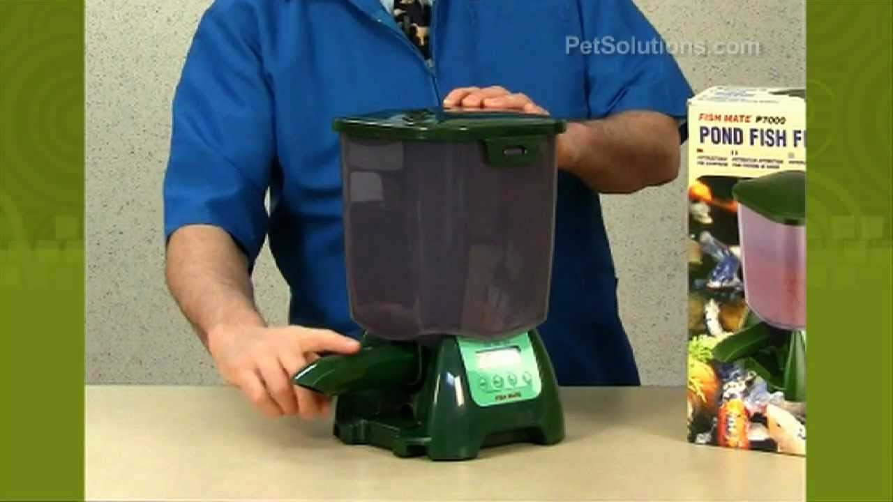Petsolutions Fish Mate Automatic Pond Feeder Youtube