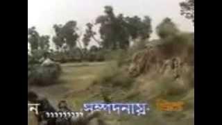 Bangla Fight