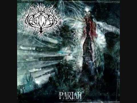 Naglfar - A Swarm Of Plagues