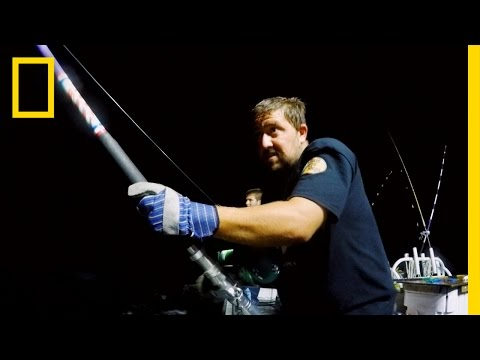 $11K Beast | Wicked Tuna: Catch of the Week