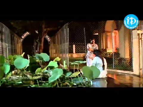 Chukkallara Choopullara Ekkadamma Song - Aapathbandhavudu Songs...