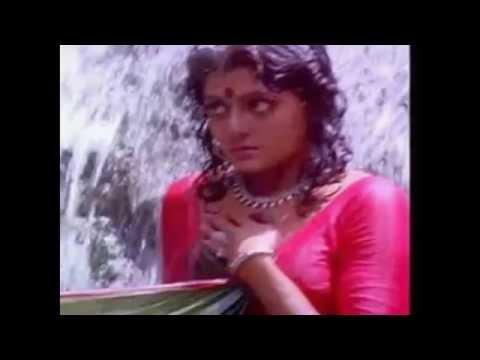 tollywod-herione-bhanupriya,hot-Bhanupriya-wet saree,wet-saree-bhanupriya,wet-saree-hot