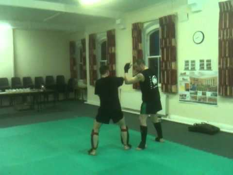 stroke the lute sanshou with jow part 1.MOV Image 1