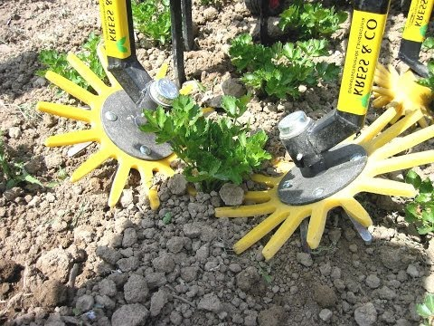 K.U.L.T. Fingerhacke, hacken in der Reihe; K.U.L.T. finger weeder, in row cultivator