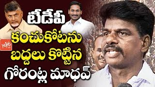 YSRCP Gorantla Madhav Victory Breaks TDP Records In Hindupur | AP Election 2019 Results