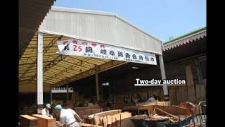 Gifu Precious Wood Market in Japan (3 mins version)
