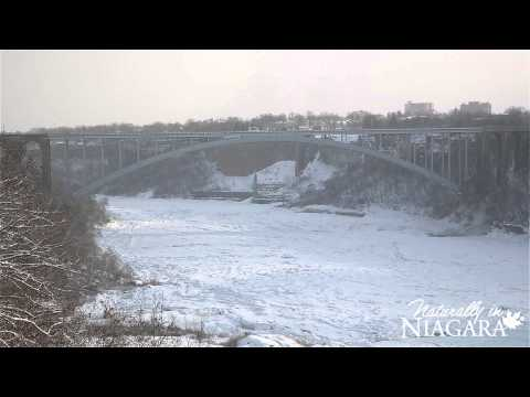 Extreme temperatures partially freeze Niagara Falls