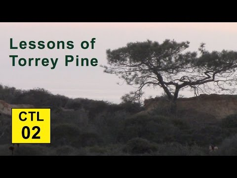 Climate, Trees, and Legacy: 02 - Lessons of Torrey Pine