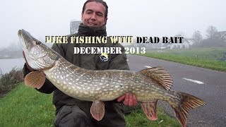 Snoekvissen met dood aas december 2013 - pike fishing with deadbait
