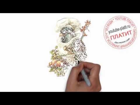 Видео как нарисовать синицу карандашом поэтапно