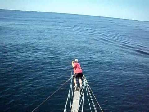 Swordfish harpooning 2012 second trip vid