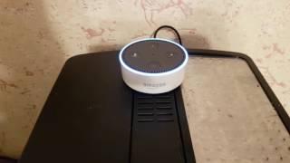 Задаю неудобные вопросы ии Amazon Alexa