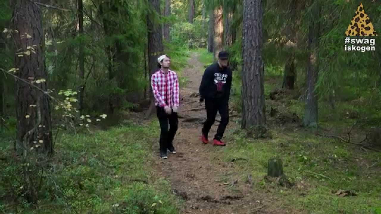 knull i skogen
