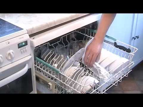 Salmon in a Dishwasher