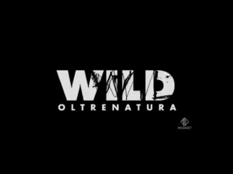 wild parodia – fiammetta cicogna