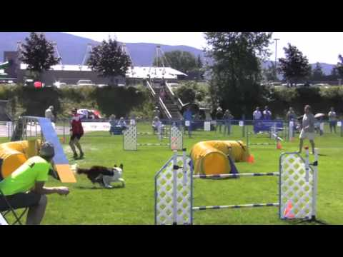 AAC Nationals 2012 Dog Agility Susan Garrett & Feature sgda