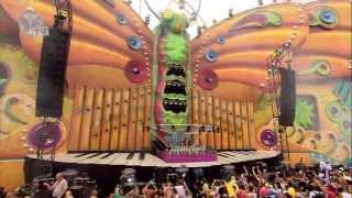 Tomorrowland 2013 - Sandro Silva