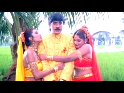 Nava Manmadhuda Full Video Song || Pelli Sandadi Movie || Srikanth, Ravali, Deepthi Bhatnagar Photo Image Pic
