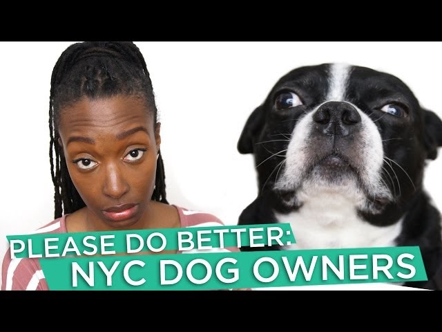 Please Do Better: NYC Dog Owners
