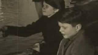 Watch School Of Fish Wrong video