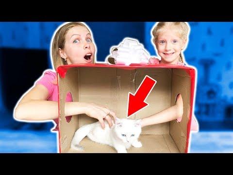 Отгадай ЧТО В КОРОБКЕ? Мама и Милана НЕ ОЖИДАЛИ ЭТОГО от ПАПЫ! Смешной Челлендж от Family Box