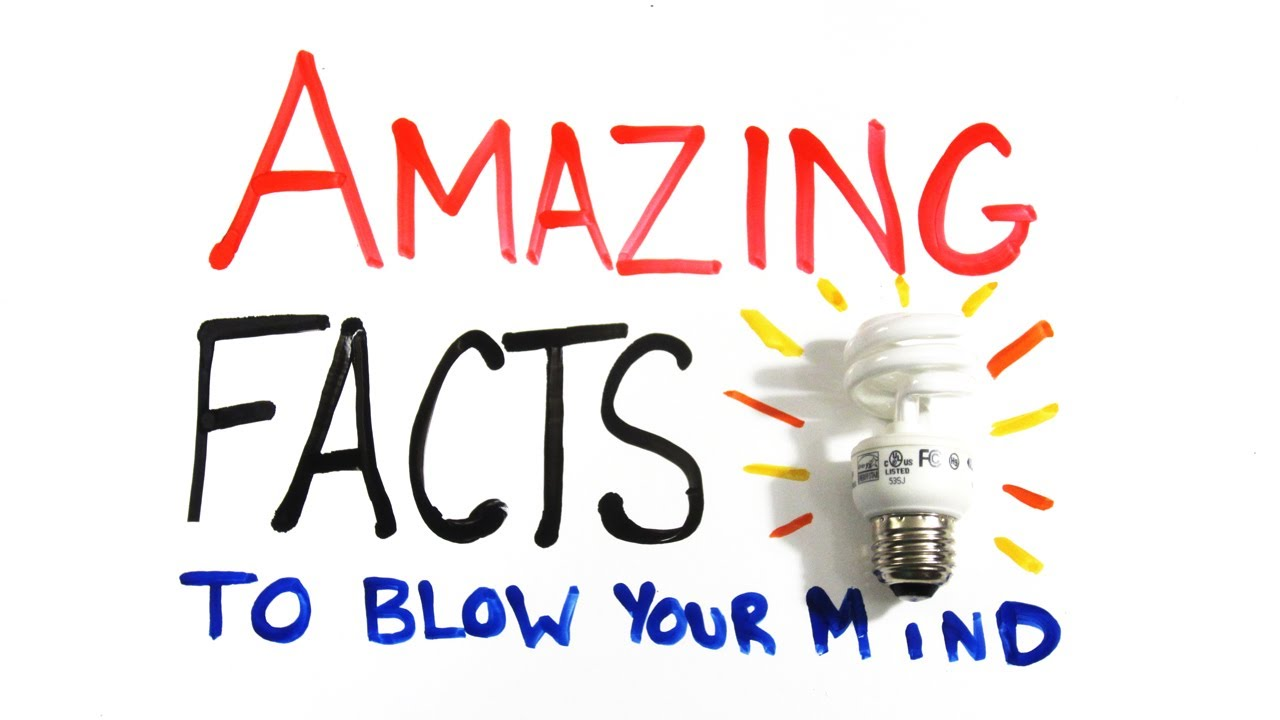 amazing facts to blow your mind pt 1 youtube