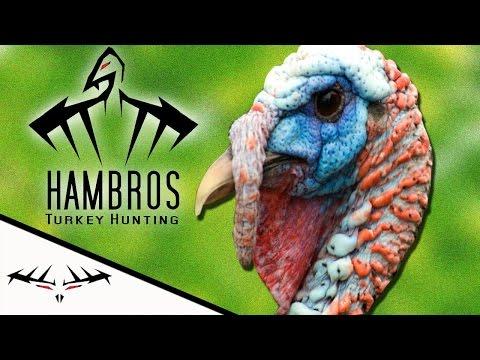 Ohio Spring Turkey Hunting (Ben Franklin)