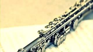 download lagu Flute Instrumental Songs Indian 2016 Hits Hindi Music Bollywood gratis