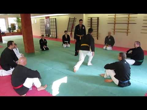 Hapkido Training am 2.3.14 Image 1