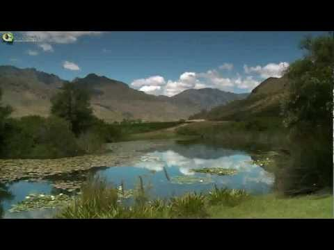 Video over Franschhoek en de Franschhoek Wine Valley in Zuid-Afrika