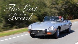 Jaguar E-Type - The Last of the Breed