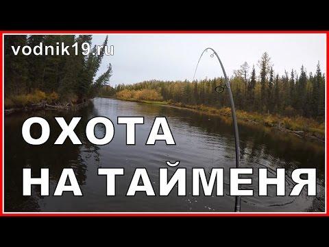 Атака ТАЙМЕНЯ НА МЫША днем! Видео рыбалки на трофейного тайменя в реальном времени