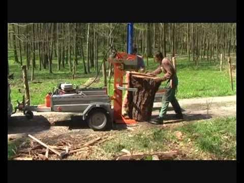 Topte drevom