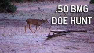 Unbelievable .50 BMG Whitetail Deer Hunt