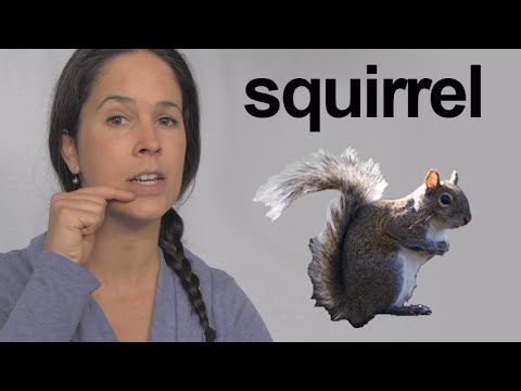 How to Pronounce Squirrel – American English Pronunciation