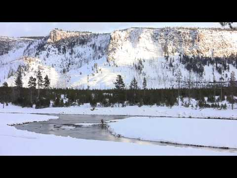 Winter Survival in Yellowstone National Park