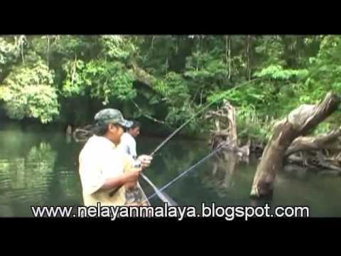 Badong TERBESAR di MALAYSIA 15KG