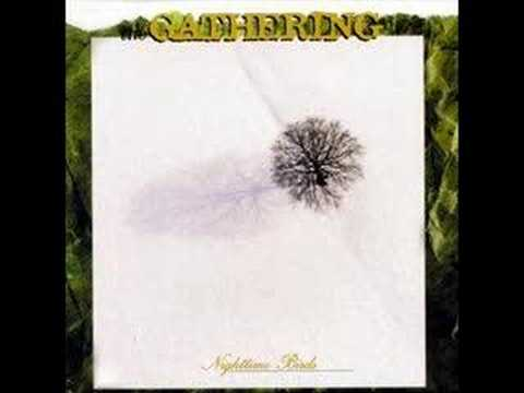 Gathering - On Most Surfaces