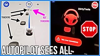 Tesla Autopilot Update Brings Stop Light Warning (kinda) and More Advanced Speed Control | FSD |