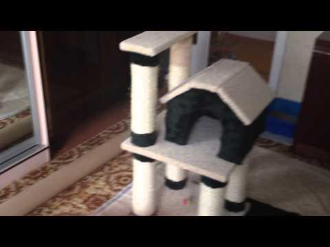 Как своими руками сделать дом для кота